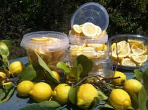 cubetas citricos