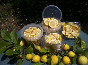 cubetas limones 2